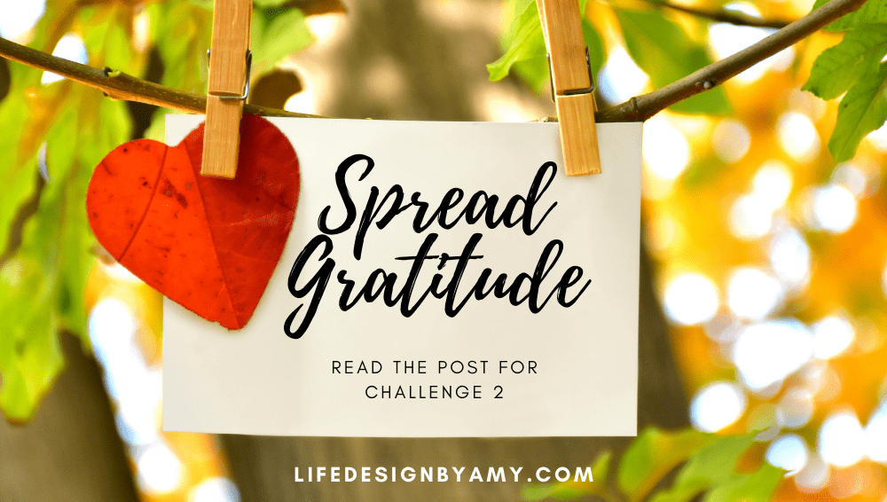 gratitude challenge 2