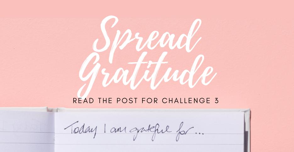 gratitude challenge 3