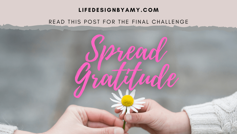 gratitude challenge 4